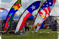 Sugar Land Kite Festival