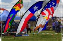 Sugar Land Kite Festival